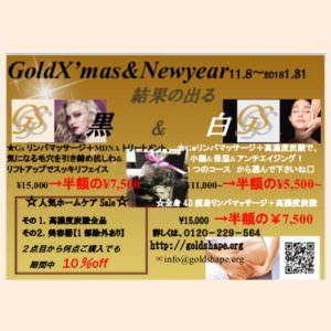 🌟 GoldX mas &Newyear🌟年に1度の大キャンペーン開催♪顧客様、ご新規様、お友達、ペアも誰でも参加可能です♪♪最大3つまでのコースが50%off +大人気のホームケアが2点目から10%offにて等盛りだくさん♪詳しくは、0120229564or info@goldshape.orgまで。🌟